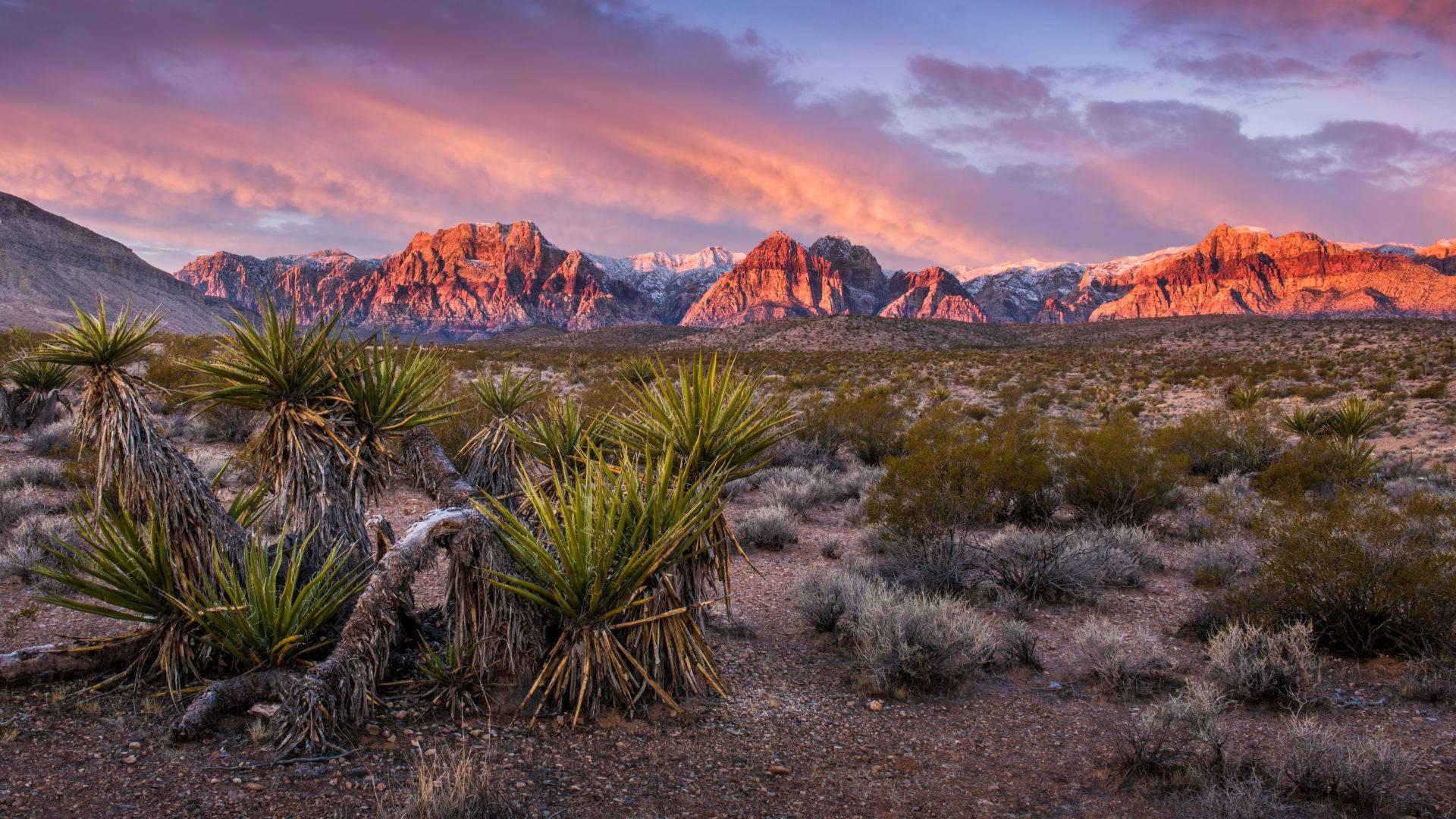 Nature Around Vegas From Reddit Wanderlog Travel Itineraries