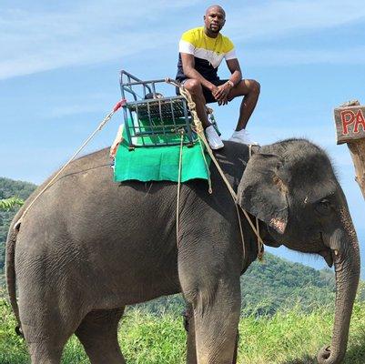 Pang Chang Kamala l Elephant Camp Phuket & Mountain ATV by ช้างให้