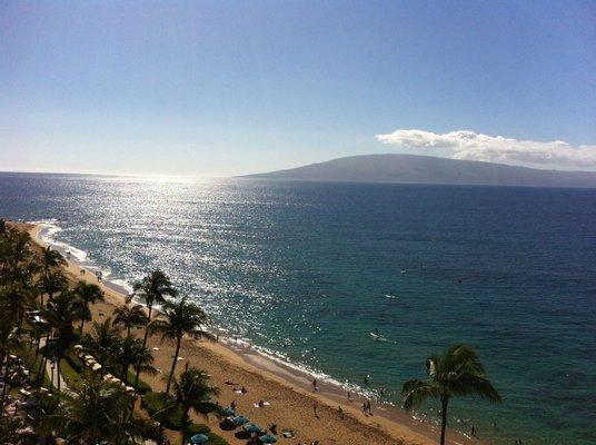 Blue Maui Tours