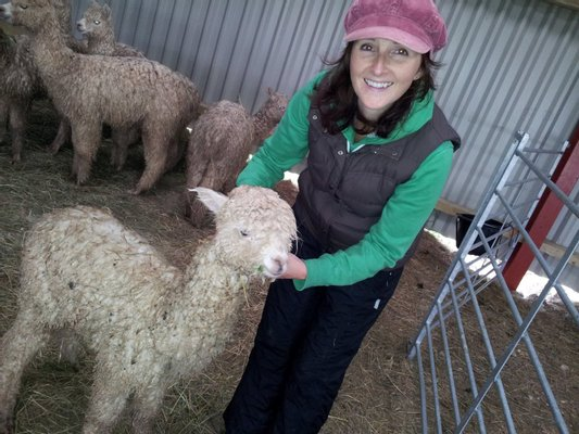 Abbotts View Alpacas - Open by booked slot only,