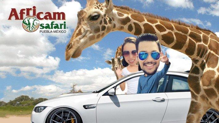 Africam Safari, Puebla