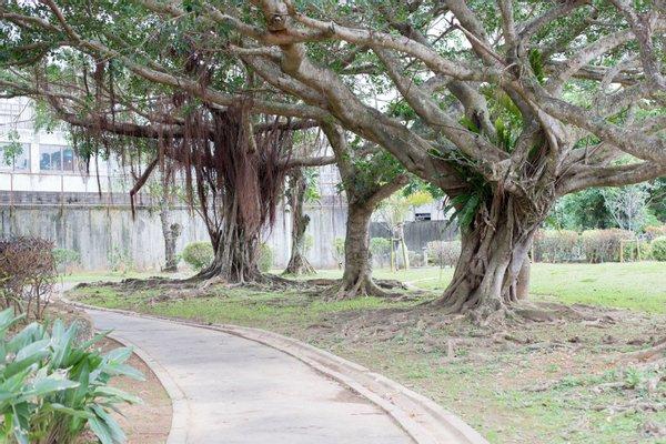Chatan Park