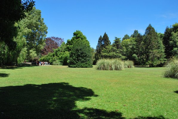 Jardin Botanico UACh