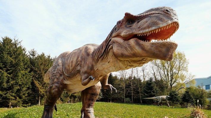 Hoo Zoo and Dinosaur World