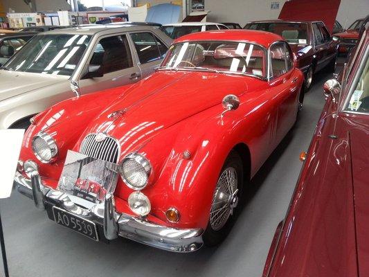 Omaka Classic Cars