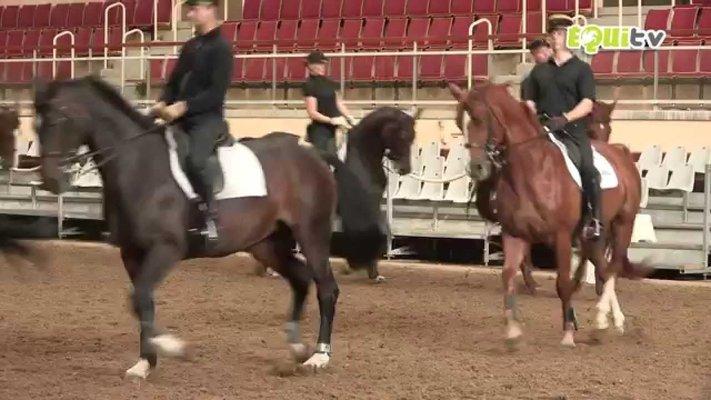 Cadre Noir De Saumur - National School D'equitation