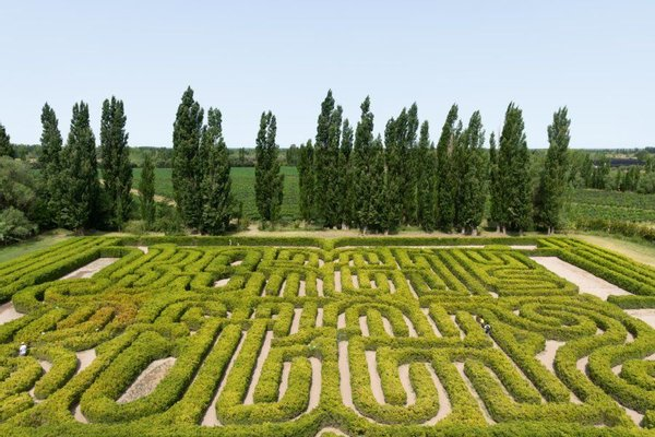 Borges Labyrinth