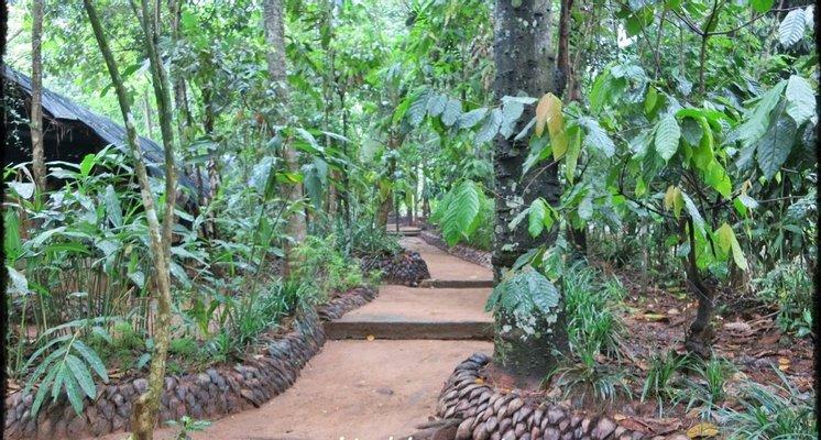 Ceylon Spice And Herbal Garden