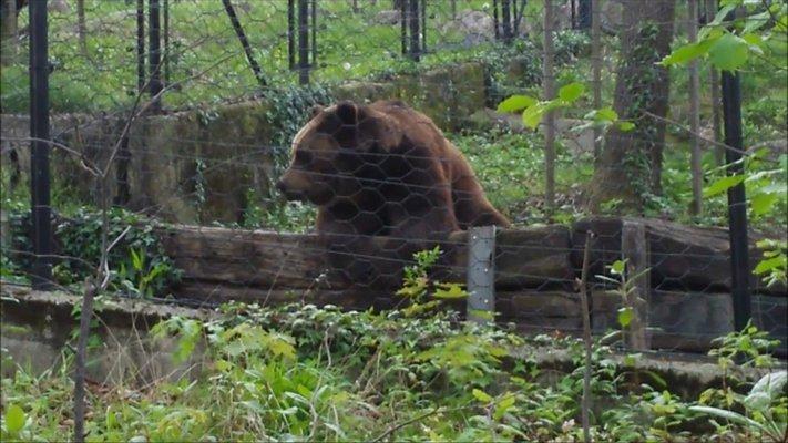Zoo of Pistoia