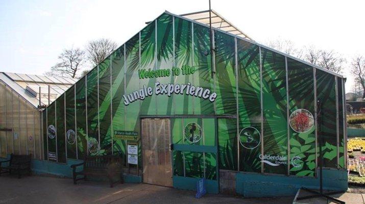 Manor Heath Jungle Experience
