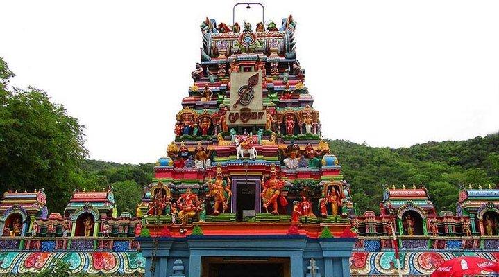 Thiru Pazhamudhircholai Murugan Temple