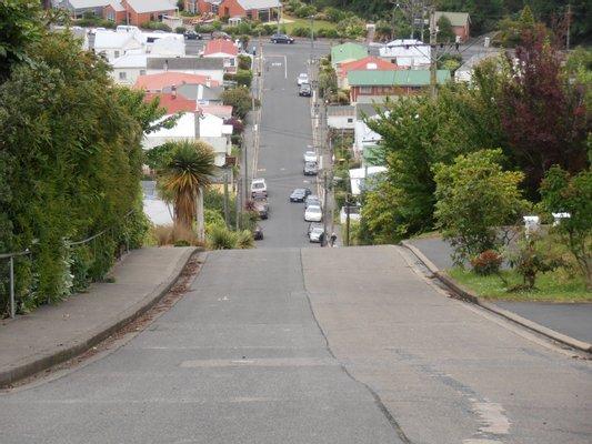 Baldwin Street: Steepest Street in the World!
