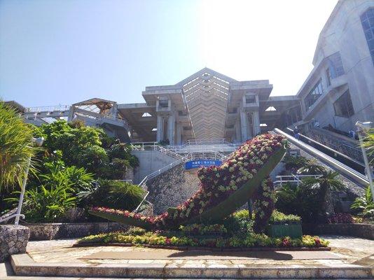 Ocean Expo Park Management Center Okinawa Churaumi Aquarium Aquarium Division,