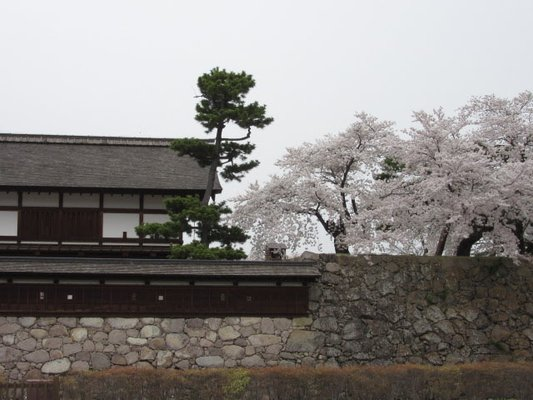 Matsushiro Castle Ruins