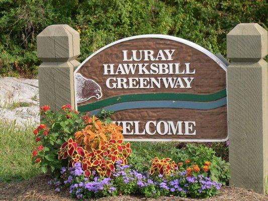The Hawksbill Greenway Foundation