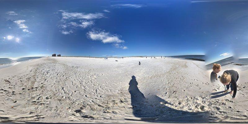 Pensacola Dog Beach