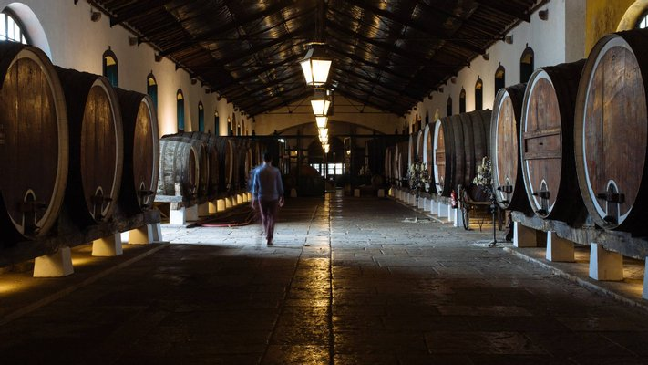 Regional de Colares Winery