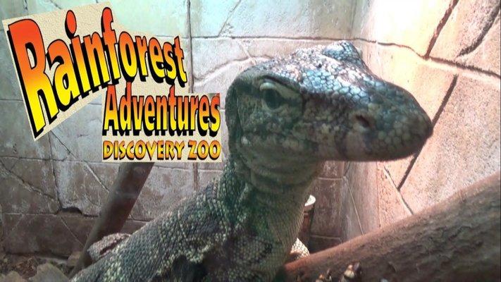 RainForest Adventures Discovery Zoo