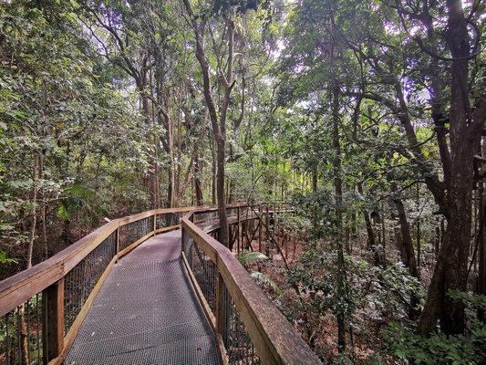 Sea Acres Rainforest Centre