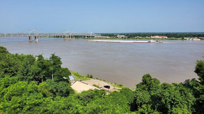 Rosalie Mississippi State Dar