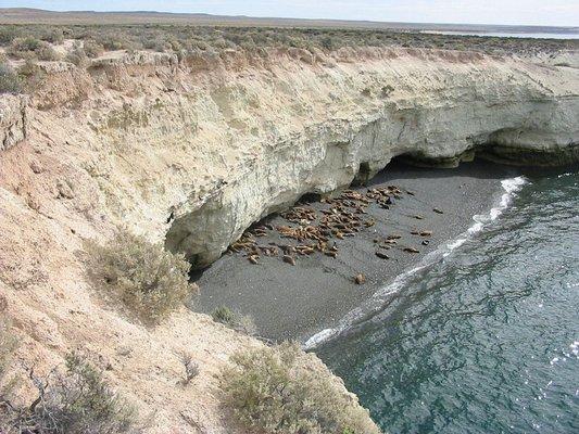 Reserva Lobería de Punta Loma