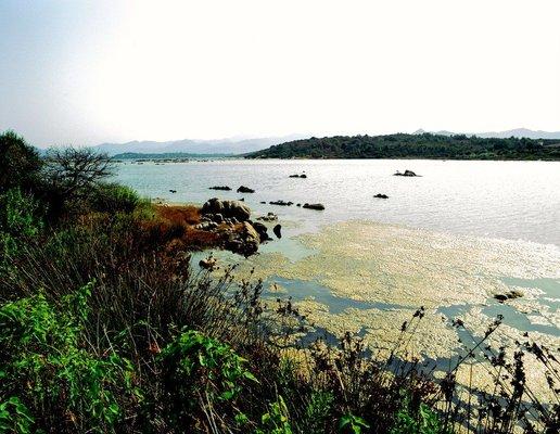 Pond of San Teodoro