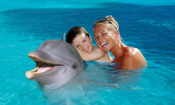 Dolphin Discovery Cancun