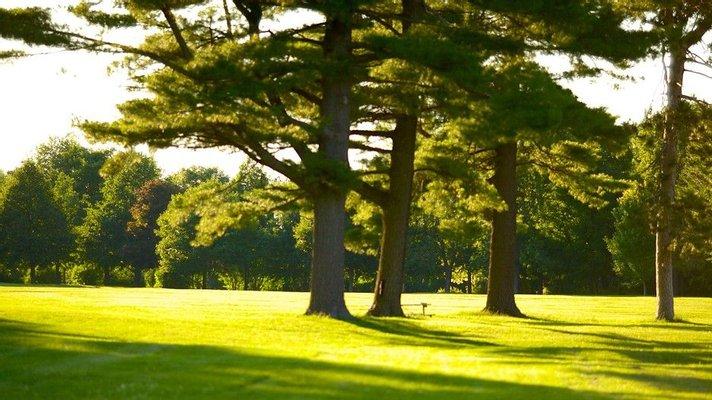 Arboretum Sunnidale Park