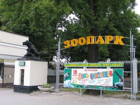 Kaliningradskiy Zoopark