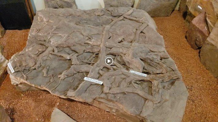 St. George Dinosaur Discovery Site at Johnson Farm