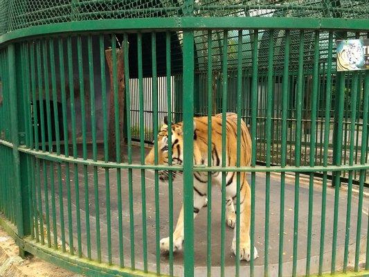 Thiruvananthapuram Zoo