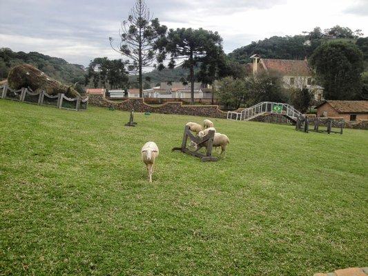 Parque Da Ovelha