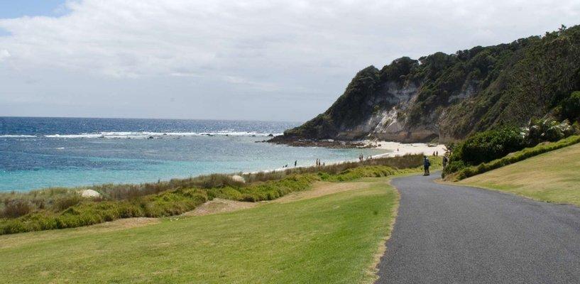 Neds Beach
