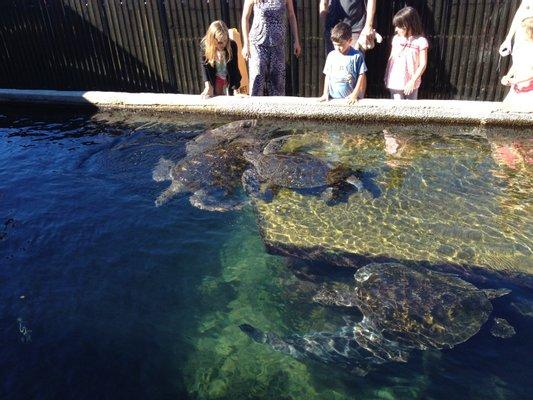 Reef World Aquarium
