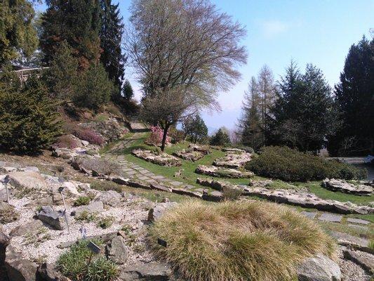 Garden Alpinia in Alpino