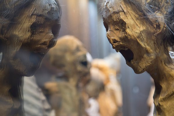 Museum of the Mummies of Guanajuato