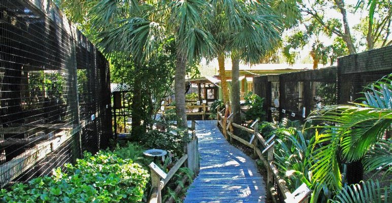 Peace River Wildlife Center