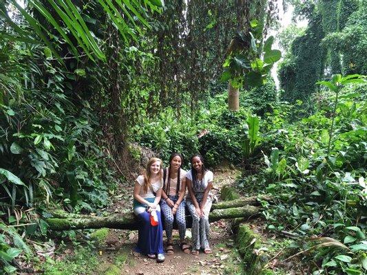 Curatic Botanic Gardens