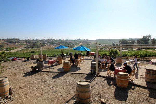 Vindemia Vineyard & Winery