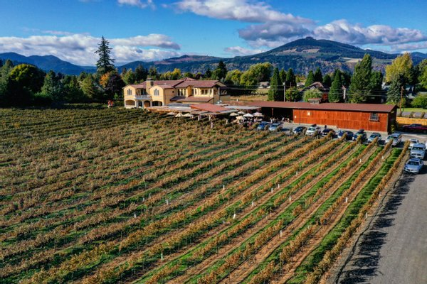 Marchesi Vineyards & Winery