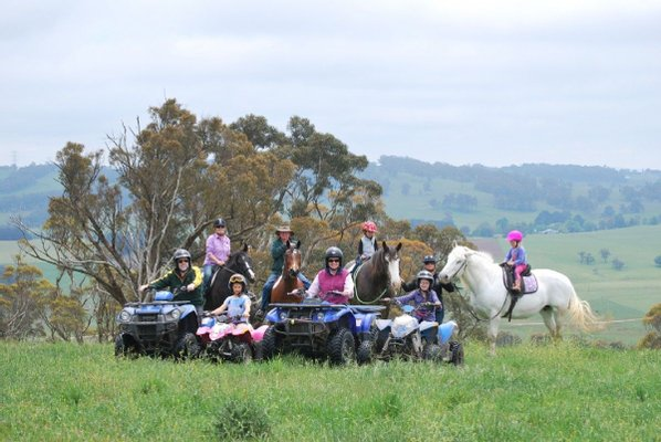 High Country Trail Rides and Farm Stay