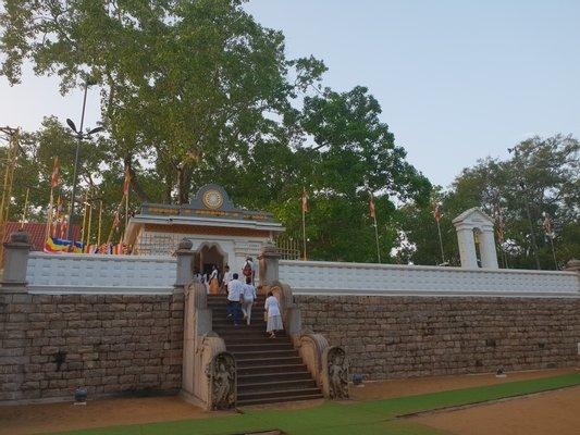 Jaya Sri Maha Bodhi ජයසිරි මහ බෝධිය