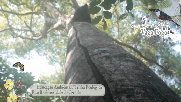 Santuário de Vida Silvestre Vagafogo