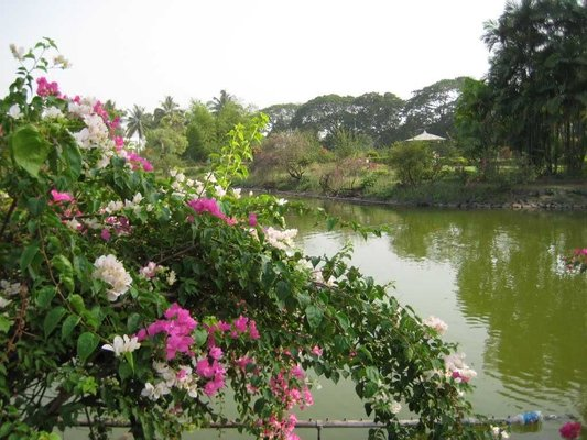 Vanganga Garden