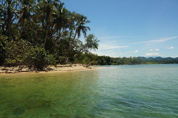 Willies Tours Costa Rica