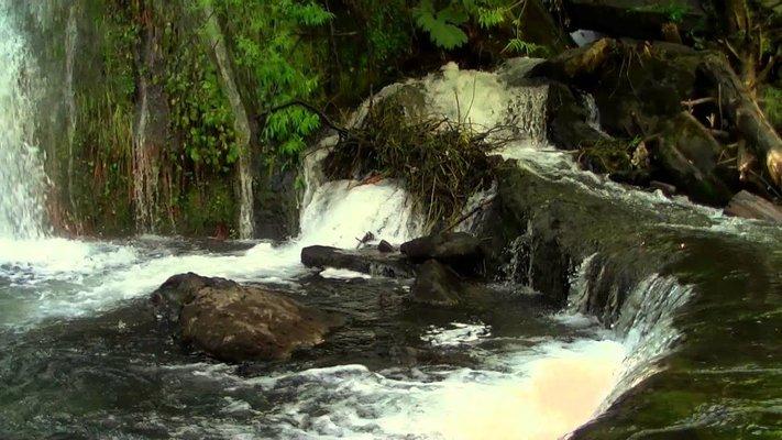 Cascada Escondida, El Bolsón