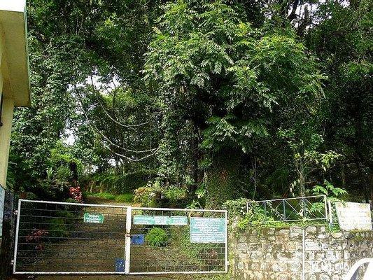 Government Botanical Garden