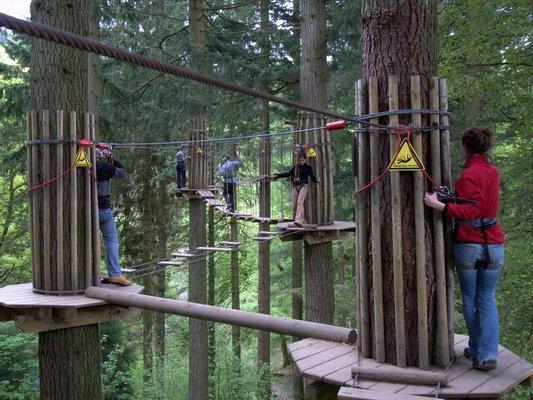 Go Ape Grizedale (Treetop Challenge, Zip Trek, Segways, High Ropes)
