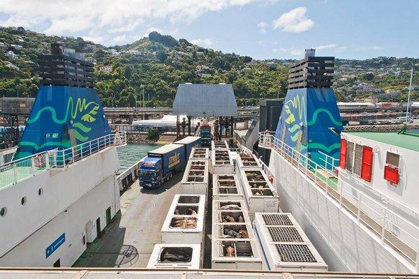 Wellington Interislander Ferry Terminal