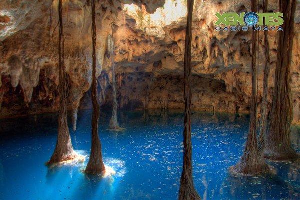 I.M.X TOUR - Melekcan Tourism